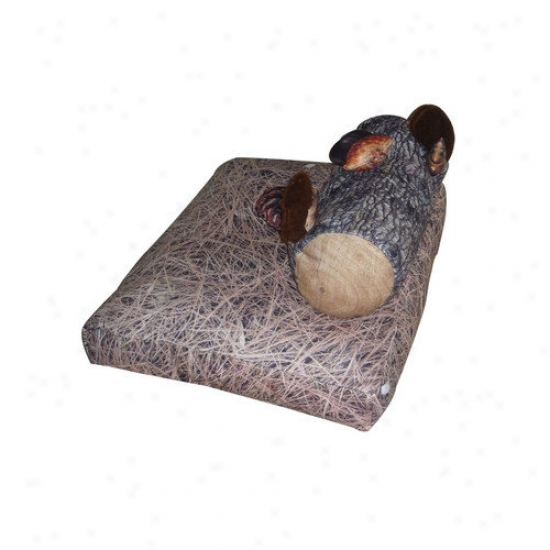 Dogzzzz Squirrel Dog Bed And Toys Set