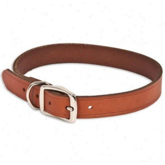 Dpskocil 19832 1in X 24in Brown Leather Dog Collar