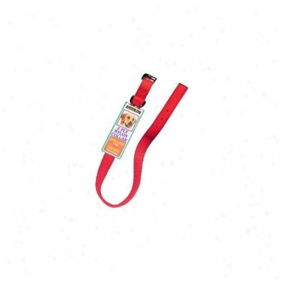 Doskocil - Aspen Pet 1inch X 26inch Red Nylon Collar  21406