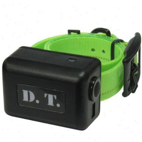Dt Systems H2o 1-mile Remote Dog Trainer Adr-on Collar In Green