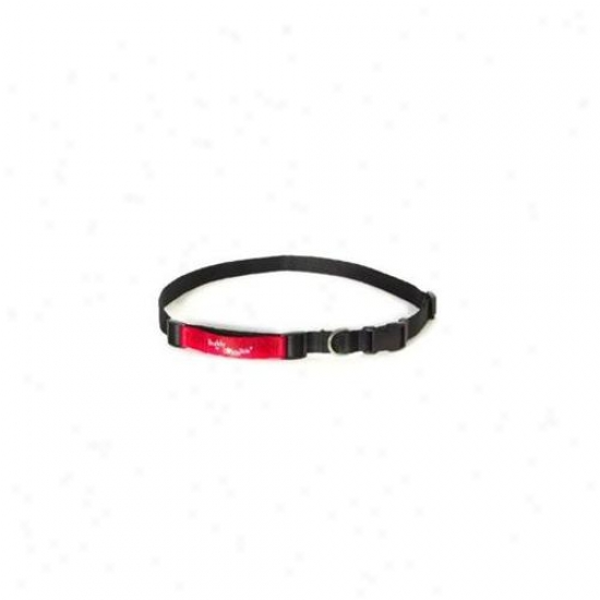 Dutch Dog Amsterdam Drjb3238 32-38'' Large Jogying Belt