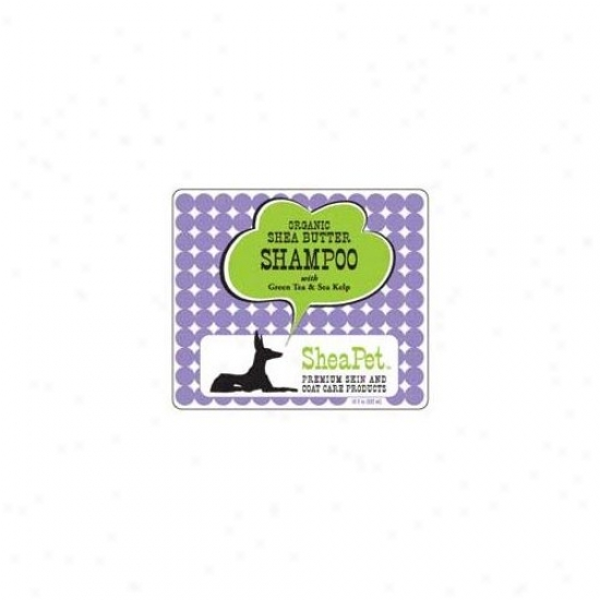 Earthbath Shea Pet Green Tea Kelp Shampoo (18 Oz.)