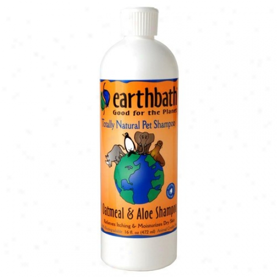 Earthwhile Endeavors Inc Pa1p 16 Oz Oatmeal And Aloe Shampoo