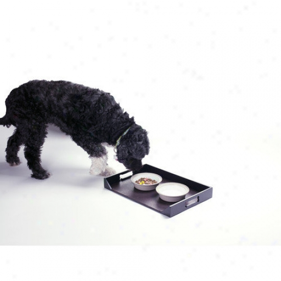 Enchanted Home Pet Dog Feeding Platter