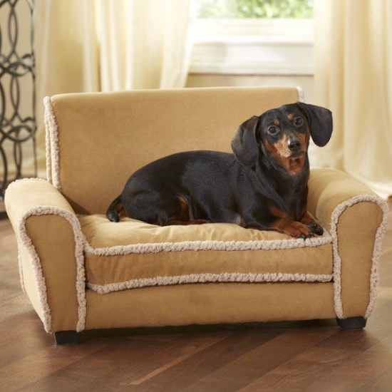 Enchanted Home Pet Ultra Plush Club Chair