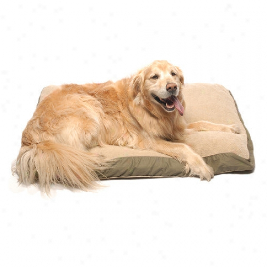 Evdrest Pet Four Make palatable Pet Bed With Cashmere Berber Top In Olive With Khaki Cording