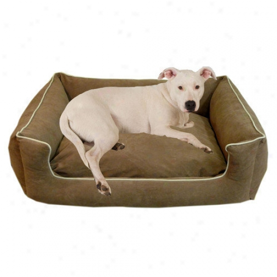 Everest Pet Low Profile Kuddle Lounge Dog Bed