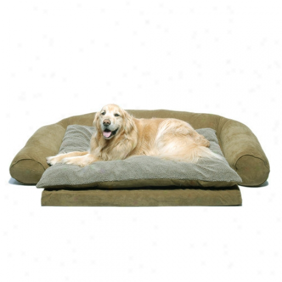 Eferest Pet Ortho Slesper Comfort Couch  Dog Bed In Sage