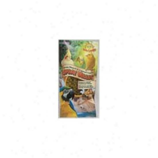 F. M.  Browns Pet 42934 Orange Extreme Honey/calcoum Spray Millet 4 Ounce
