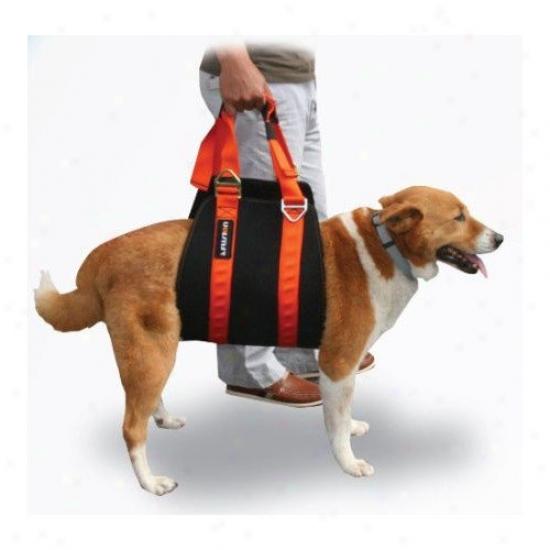 Fusion Pst X-karimor Theraputic Dog Harness