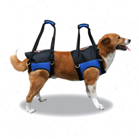 Fusion Pet Zupport Theraputic Front Dog Harness