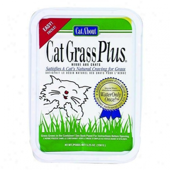 Gimborn Pet 418736/74670 Cat Grass Plus