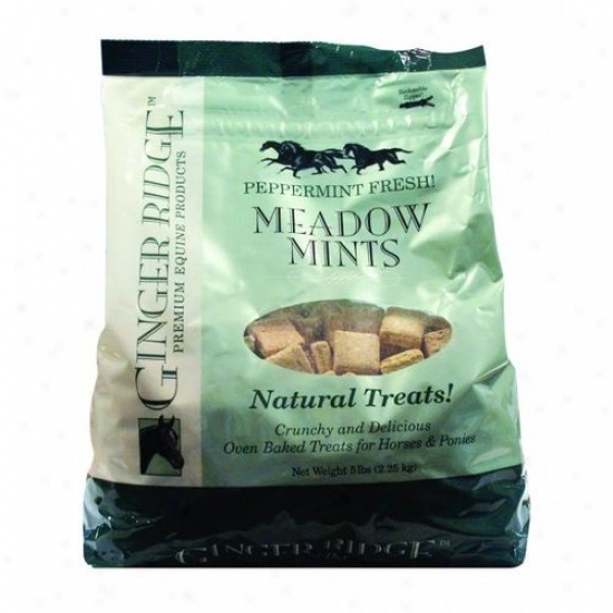 Ginger Ridge 99257 Meadow Mints Horse Treqts