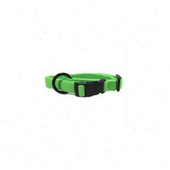 Hamilton Pet Company - Adjustable Dog Collar- Lime . 63 X 12-18 - Fas 12-18 Li