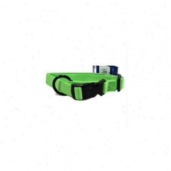 Hamilton Pet Company - Adjustable Dog Collar- Lime . 75 X 16-22 - Fam 16-22 Li