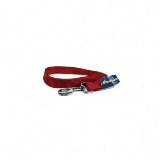 Hamilton Pet Company - Single Thick Nylon Lead- Red 1 X 2 - Slo 2rd