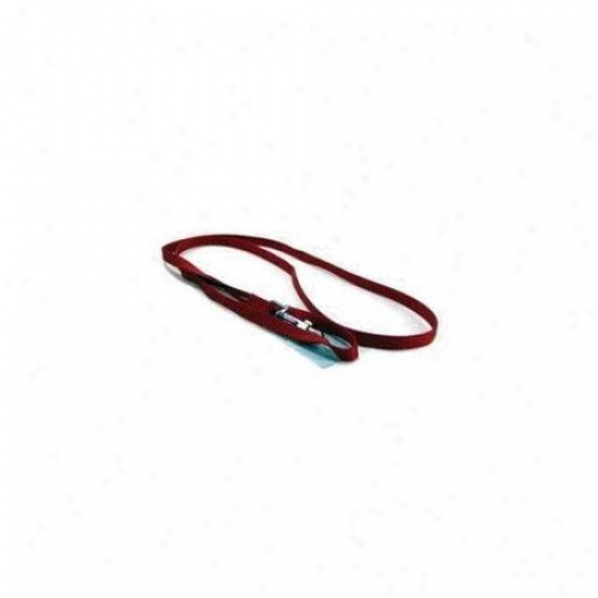 Hamilton Pet Company - Single Thick Nylon Lead- Red . 38 X 4 - Sle 4rd