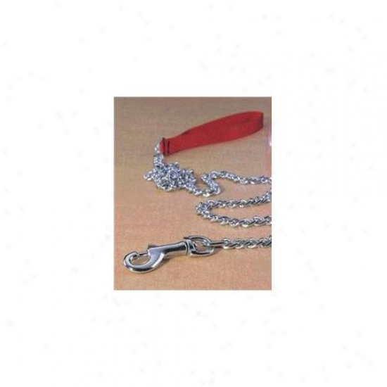 Hamilton Pet Company - Steel Chain Lead Through  Nylon Hndle Heavy 4 - L3048