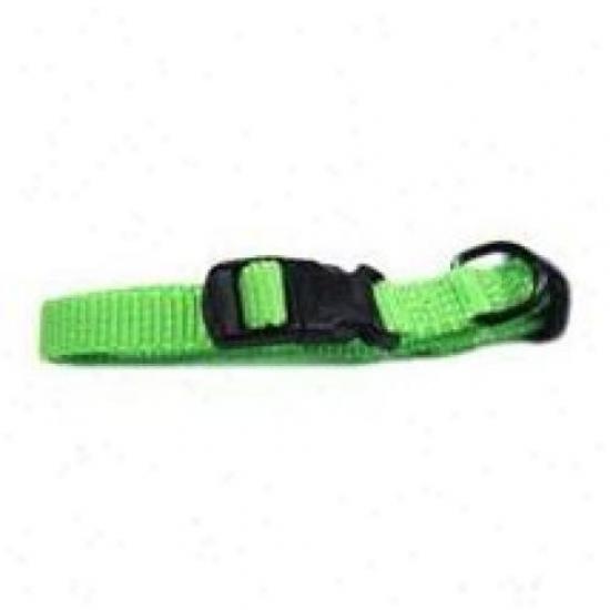 Hamilton Pet Fae 7/12 Li 7-in. To 11-in. Adjustable Dog Collar, Lime