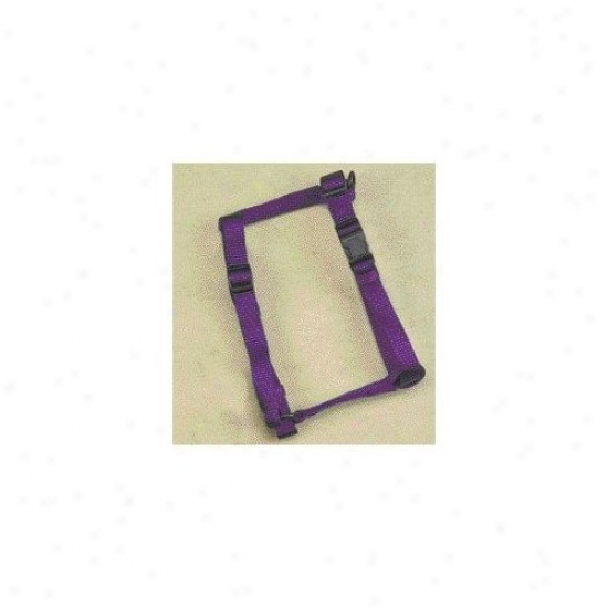 Hamilton Fondle Products Adjustable Comfort Dog Harness In Hot Purple