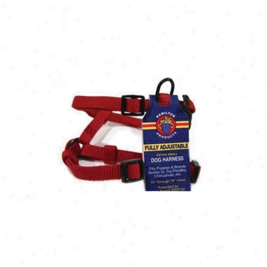 Hamilton Pet Produucts Adjustable Comfort Dog Harness In Red