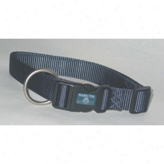 Hamilton Fondle Products Adjustable Dog Collar In Gray