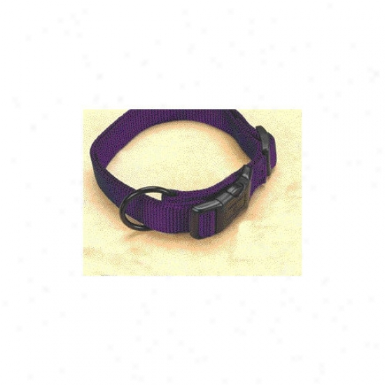 Hamilton Pet Products Adjustable Dog Collar In Hot Purple