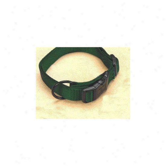Hamilton Pet Products Adjustable Dog Collar In Hunter Green