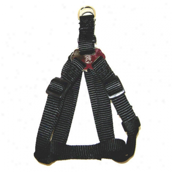 Hamilton Pet Products Adjustable Easy-on Harness In Black