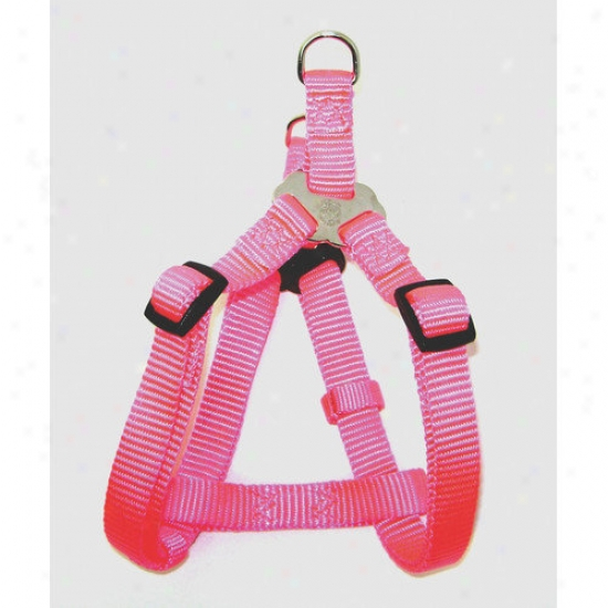 Hamilton Fondling Products Adjustable Easy-on Harness In Ardent Pink