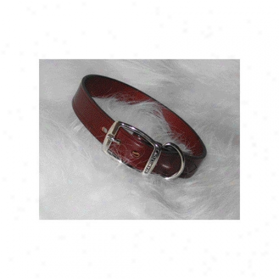 Hamilton Pet Products Creased Leather Collar In Burgundy