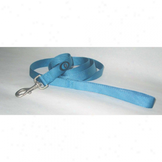 Hamilton Pet Products Dog Leash In Ocean