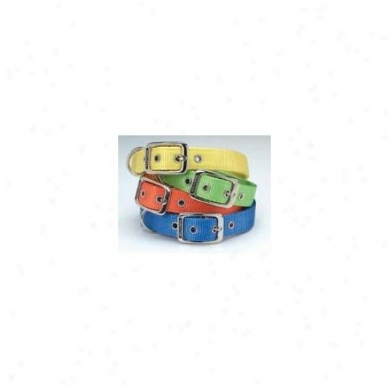 Hamilton Pet Products Double Thick Nylon Deluxe Dog Collar In Ocean