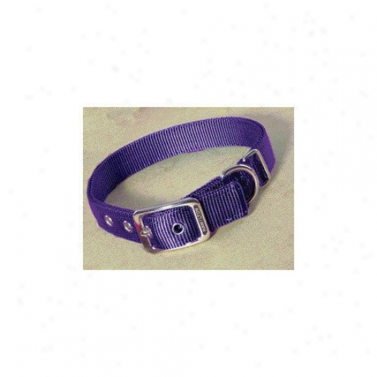 Hamilton Pet Products Double Thick Nylon Deluxe Dog Collar In Very warm Purple