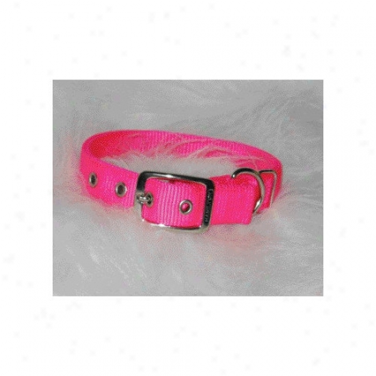 Hamilton Pet Products Double Thick Nylon Deluxe Dog Collar In Hot Pink