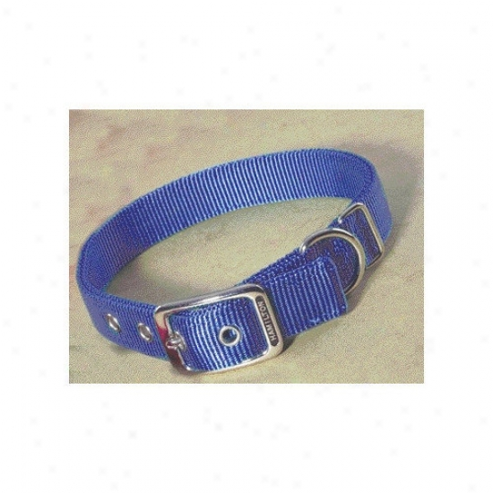 Hamilton Pet Products Double Thick Nylon Deluxe Dog Collar In Berry