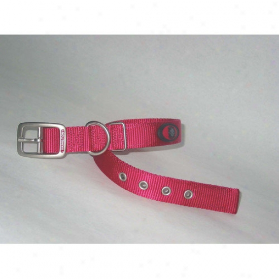 Hamilton Pet Products Double Thick Nylon Deluxe Dog Collar In Pink