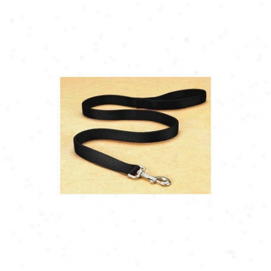 Hamilton Pet Products Double Thick Nylon Lead With Snap In Black