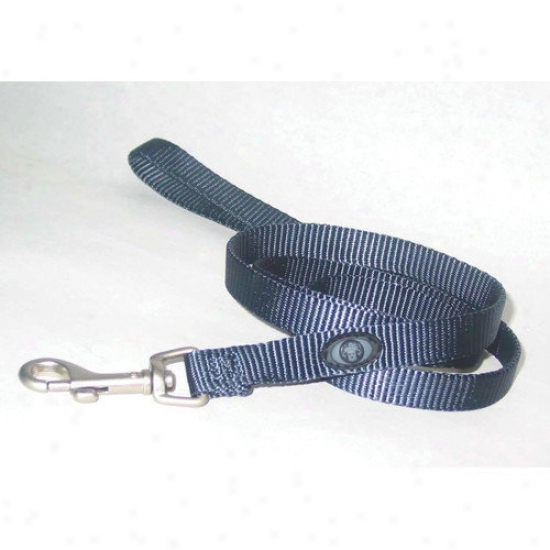 Hamilton Pet Products Nylon Lead With Swivel Snap In Gray