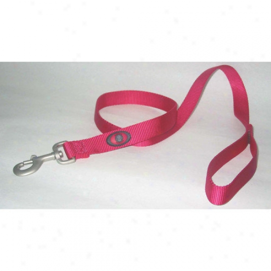 Hamilton Pet Products Nylno Lead With Saivel Snap In Pink