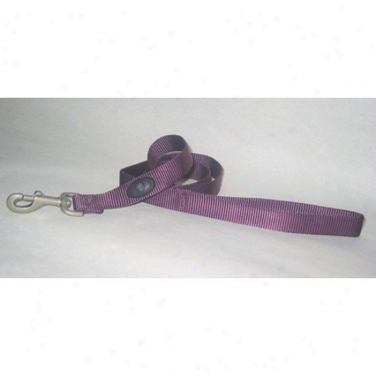 Hamilton Pet Products Nylon Lead With Swivel Snap In Purple