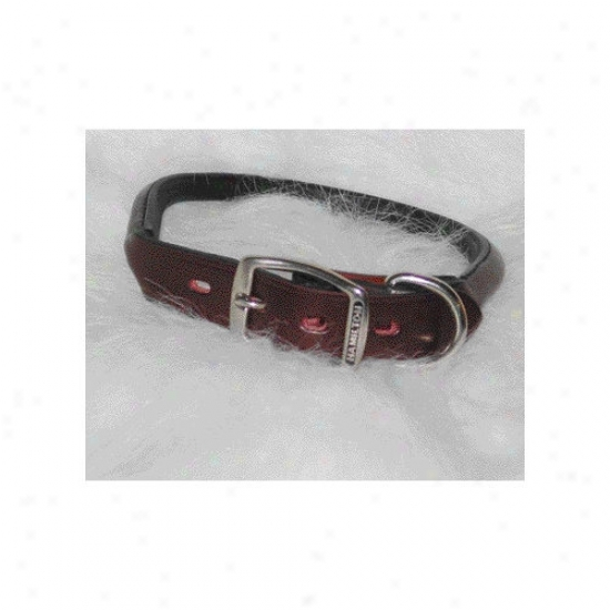 Hamilton Pet Products Rolled Leather Collar In Burgundy