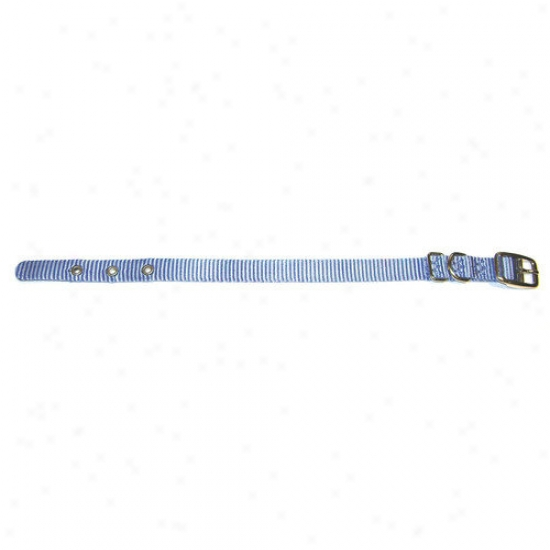 Hamilton Pet Products Single Thick Nylon Dog Collar In Berry Blue