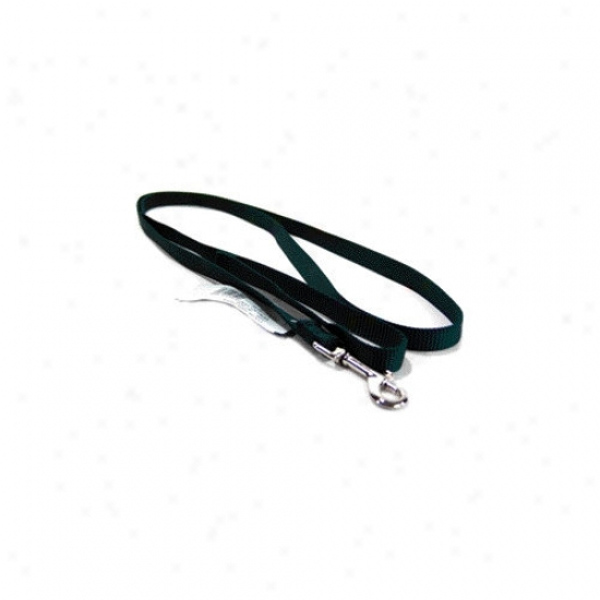 Hamilton Pet Products Single Thick Nylon Lead With Snap In Hunter Green