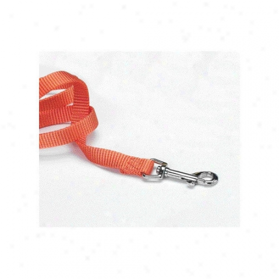 Hamilton Pet Products Single Thick Nylon Lead With Gingerbread In Mango