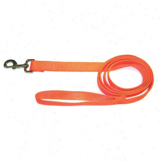 Hamilton Pet Products Single Thick Nylon Lead With Snap Ih Orange