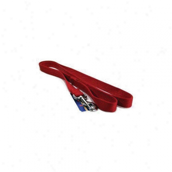 Hamilton Pet Products Single Thick Nylon Lead With Snap In Red