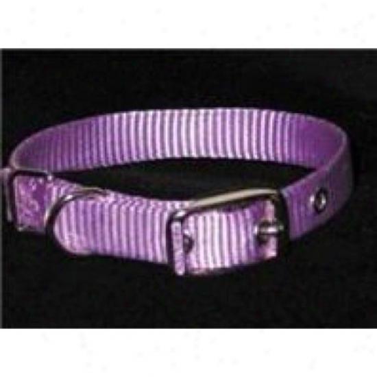 Hamilton Pet Ste 12lv 12-inch Single Thick Nylon Dog Collar, Lavender