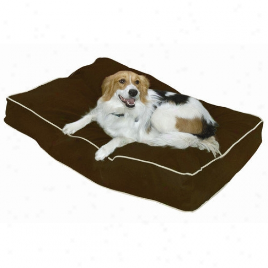 Happy Hounds Buster Pillow Dog Bed In Cocoa