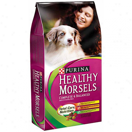 Healthy Morsels Perfect And Balanced Soft And Crunchy Bites Dog Food, 16.5 Lbs